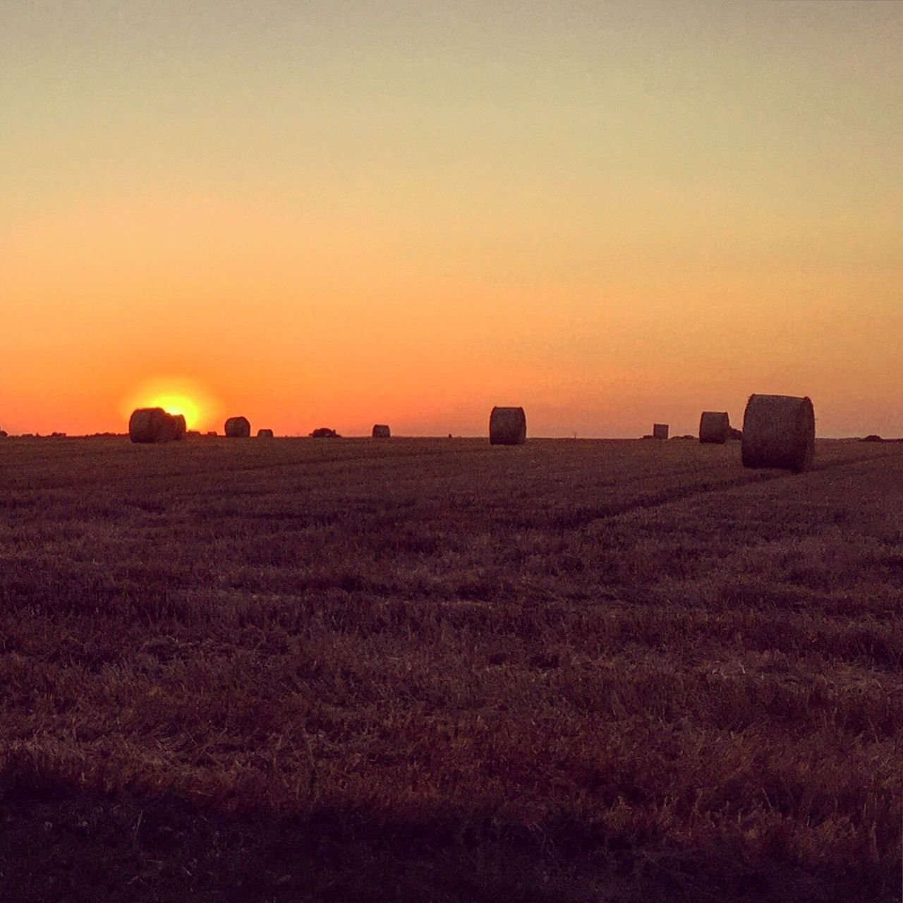 Sunset Landscape Sun Scenics Tranquil Scene Tranquility Silhouette Orange Color Field Clear Sky Beauty In Nature Rural Scene Agriculture Nature Calm Solitude Sky Outdoors Horizon Over Land Non-urban Scene