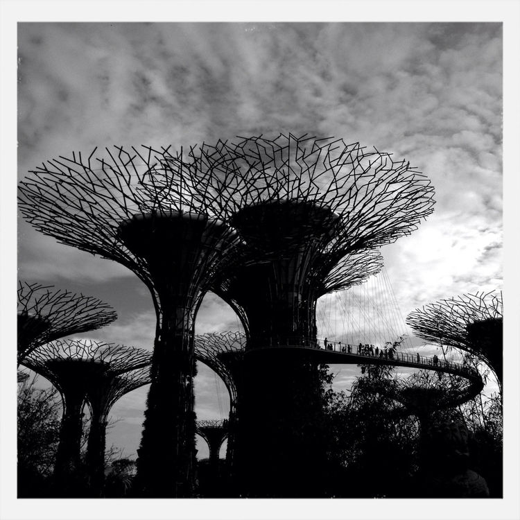 blackandwhite in Singapore by takeamono