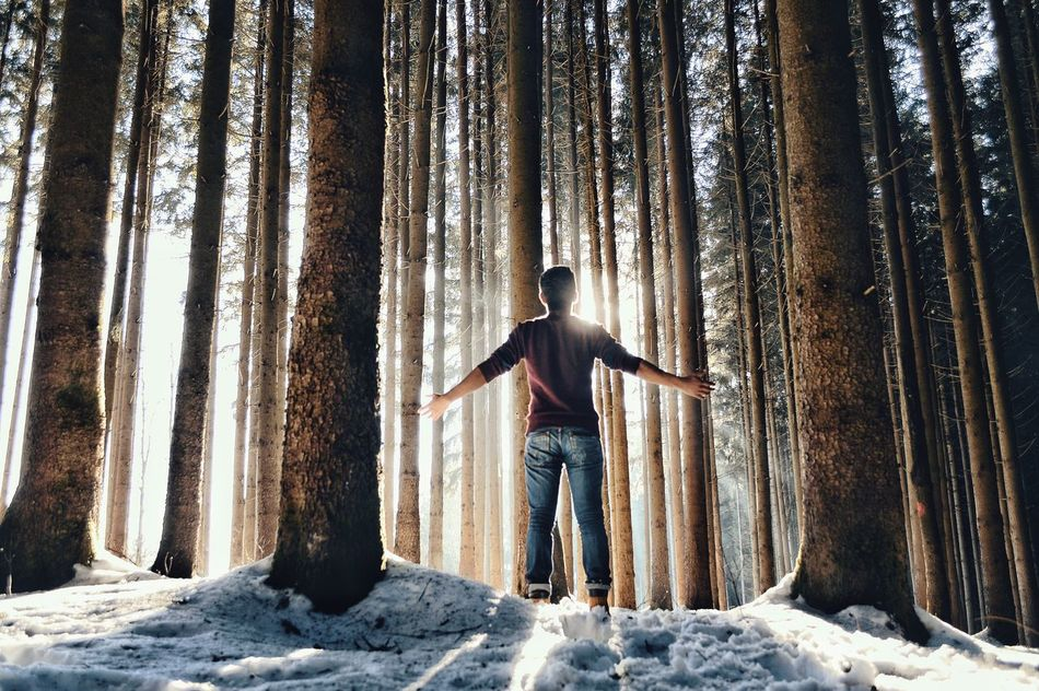 Beautiful stock photos of forest, Arms Outstretched, Beauty In Nature, Casual Clothing, Cold Temperature