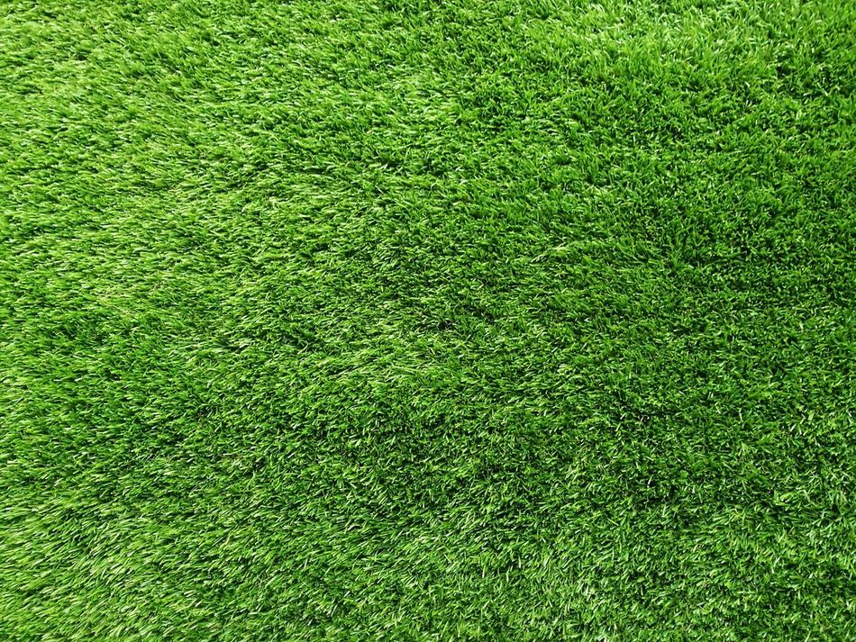 Green Color Textured  Backgrounds Green Growth Nature HuaweiP9 Lawns Green Lawns Grass Lawn Green Shrubs