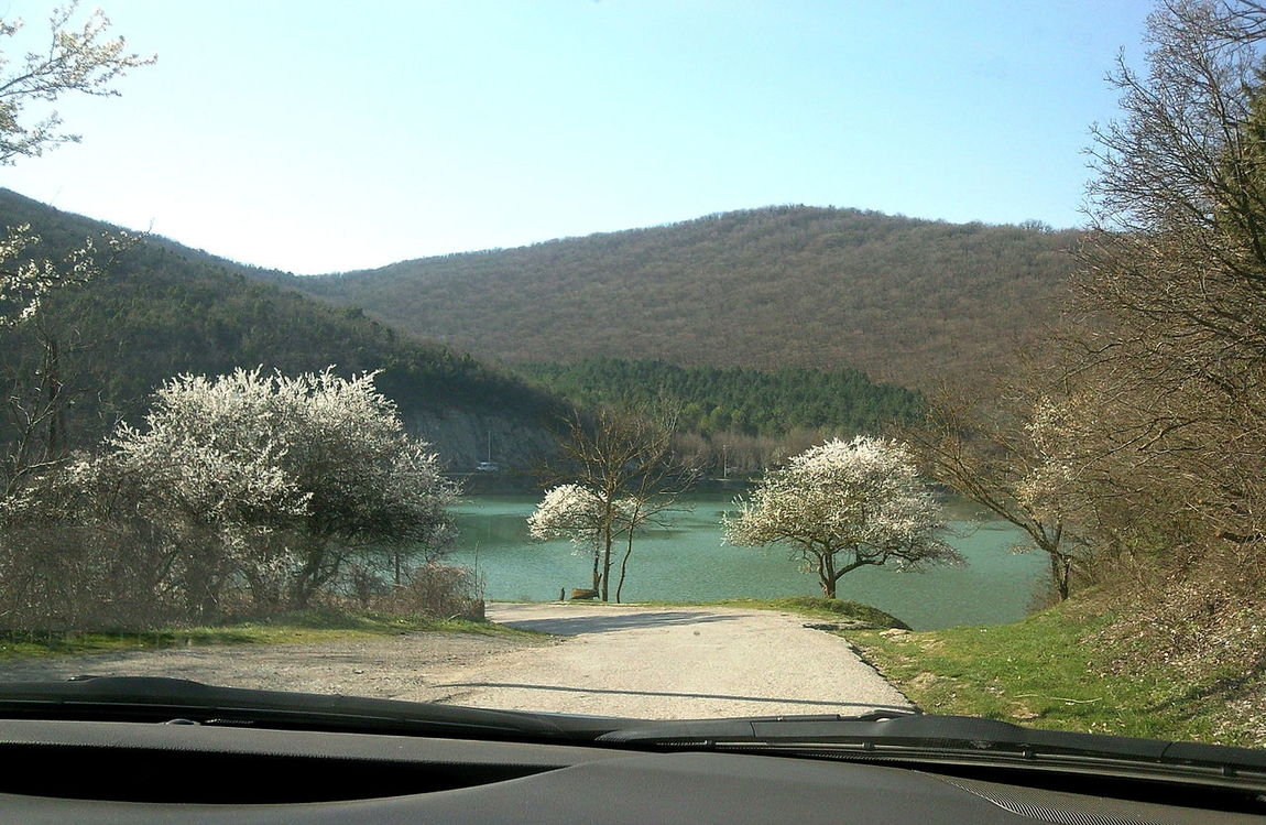 Abrau-Durso April Lake Lakeshore Landscape Morning Non-urban Scene Outdoors Road Serene Spring Tranquil Scene Tranquility Trees Абрау-Дюрсо