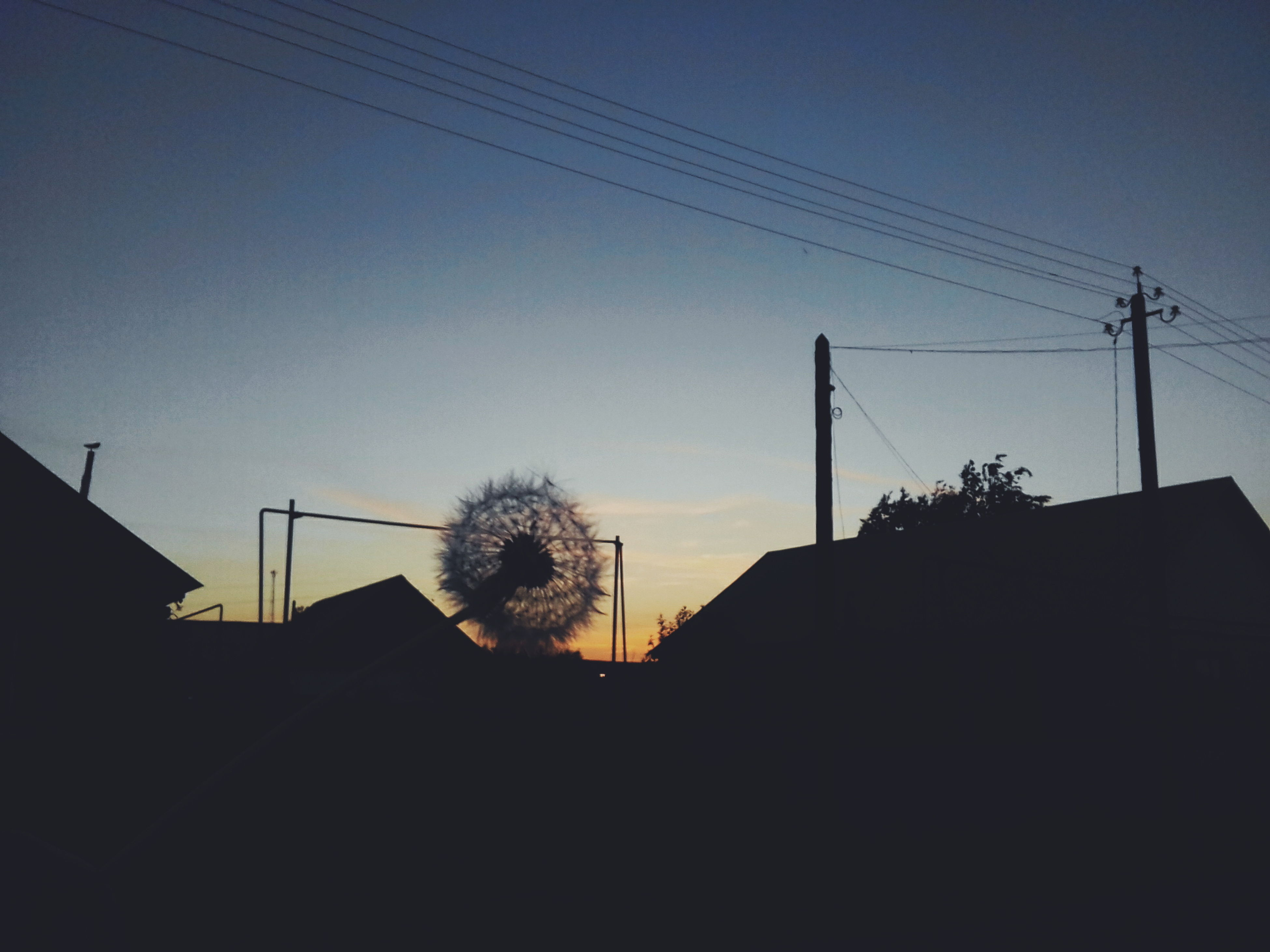 silhouette, cable, low angle view, built structure, power line, electricity, sky, no people, sunset, architecture, power supply, electricity pylon, tree, outdoors, building exterior, nature, technology, day, clear sky, telephone line, beauty in nature