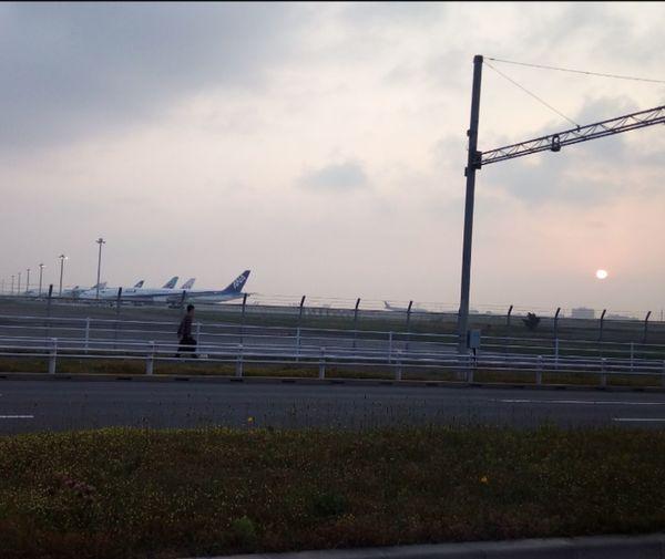 Layover in HND!! 東京ステイだよ~🌸 Good Morning Layovers Tokyo Japan Haneda Haneda Airport Hkexpress Cabincrew FlightAttendant 5月3日 祝日 Un万歳 Goodnight Oyasuminasai