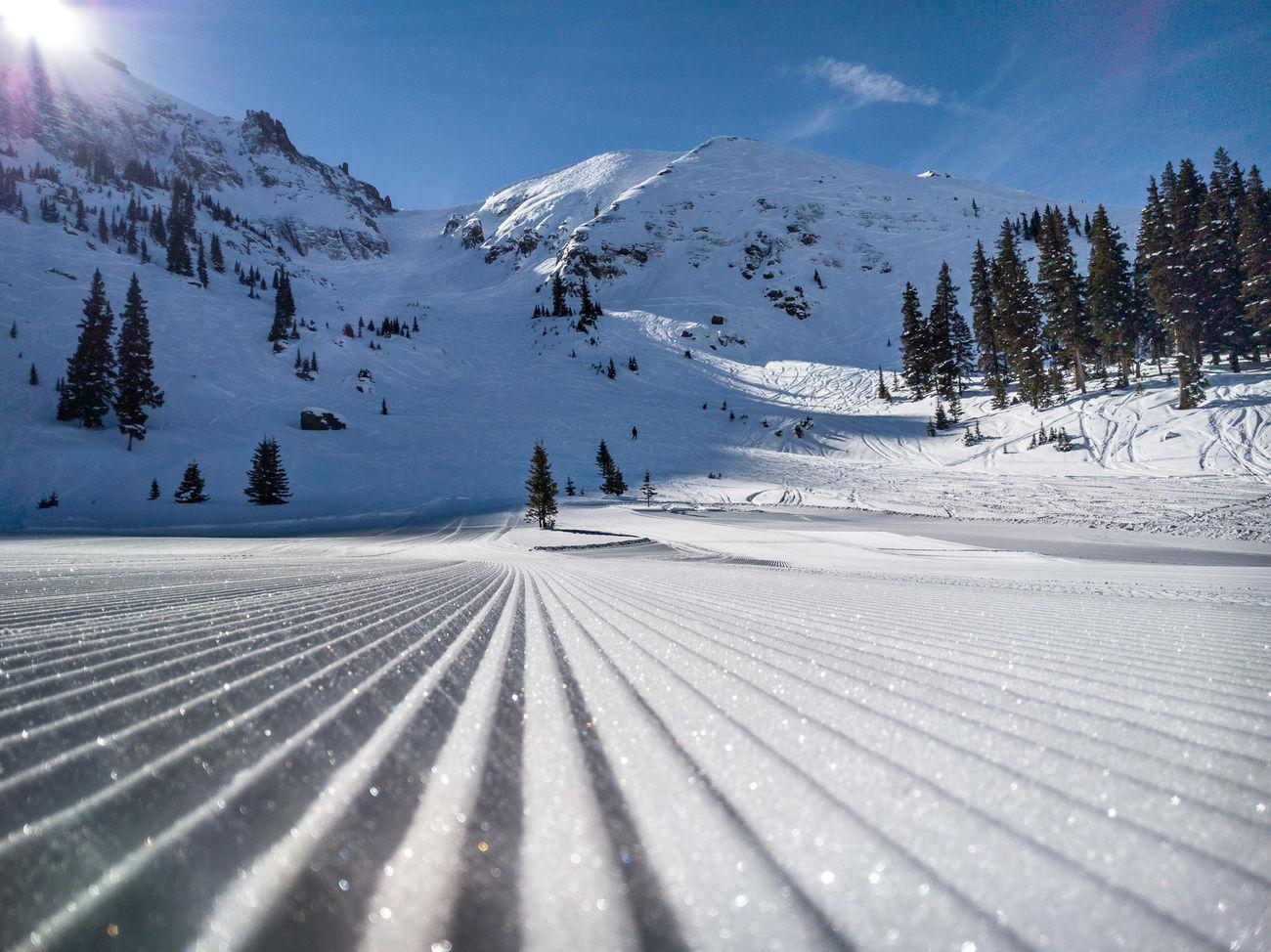 Mountain Quail - Telluride Landscape Landscape_Collection Winter Ski