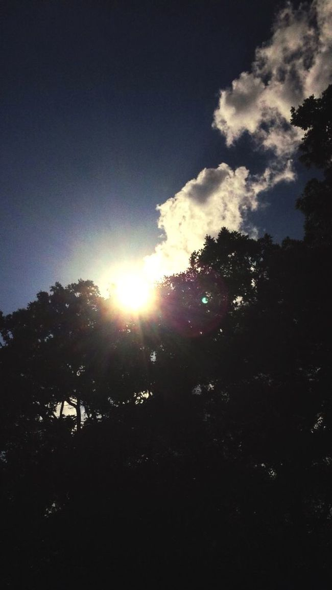 Sunshine Clouds Summertime Ending Fallsun Summergone Green Trees Highnoon