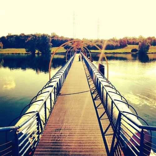 Reflection River Summer Nature Sky Bridge Trees Life Danube