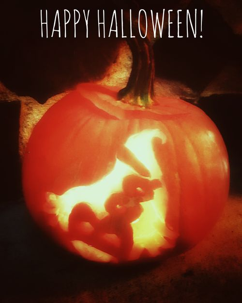 """This is one of our carved pumpkins. It is of a ghost with the word """"BOO!"""". Happy Halloween 2016! KimberlyJTilley"""