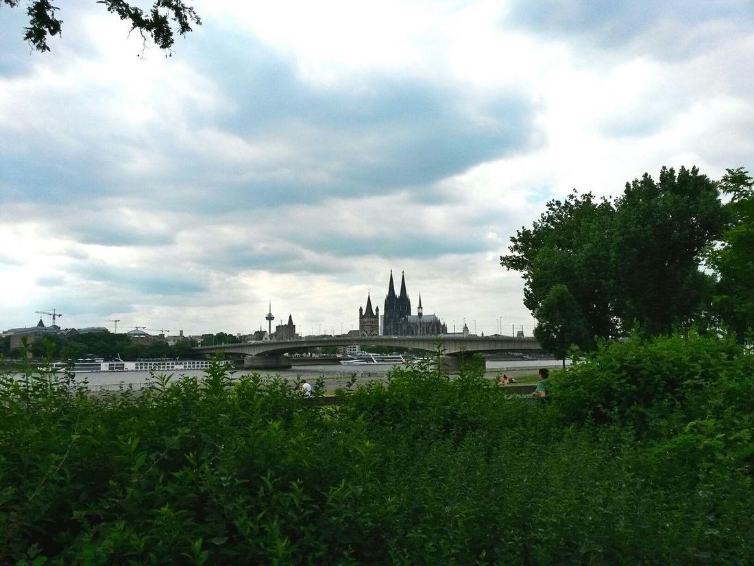 Cologne Cologne City Dom Rhine