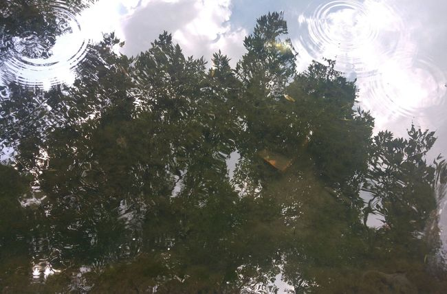 Photo♡ PhonePhotography Beautiful Day Water Reflections Hot Day Relaxing 12:00 Photography Excelent Day