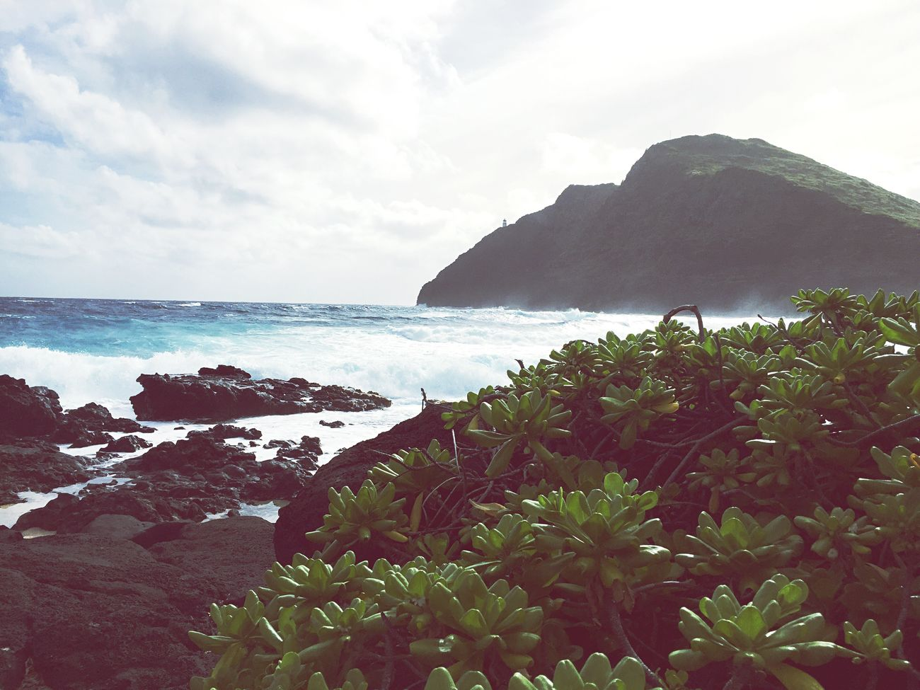 Makapu'u Oahu, Hawaii