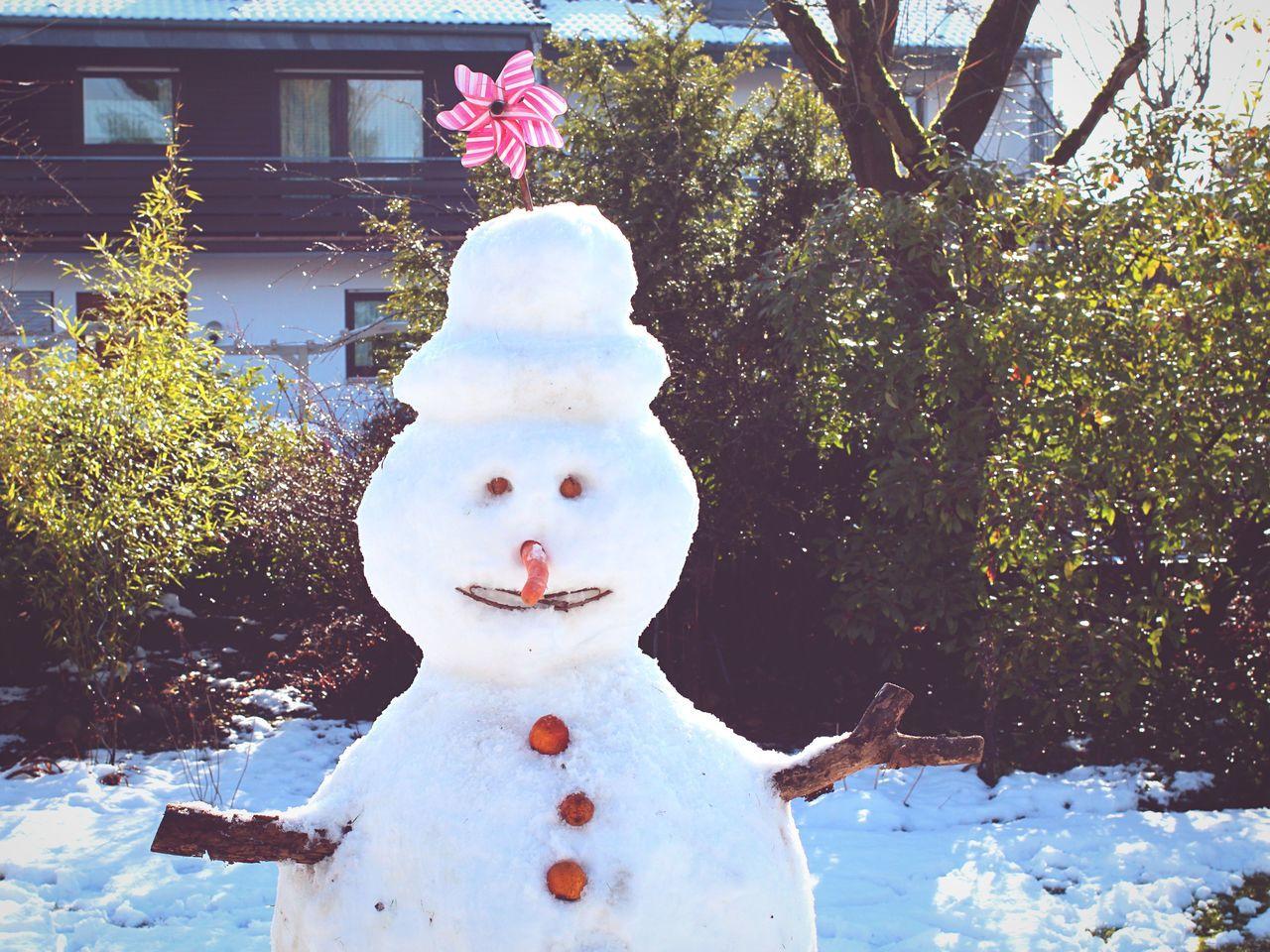 Snowman Deepfreeze Everyday Joy