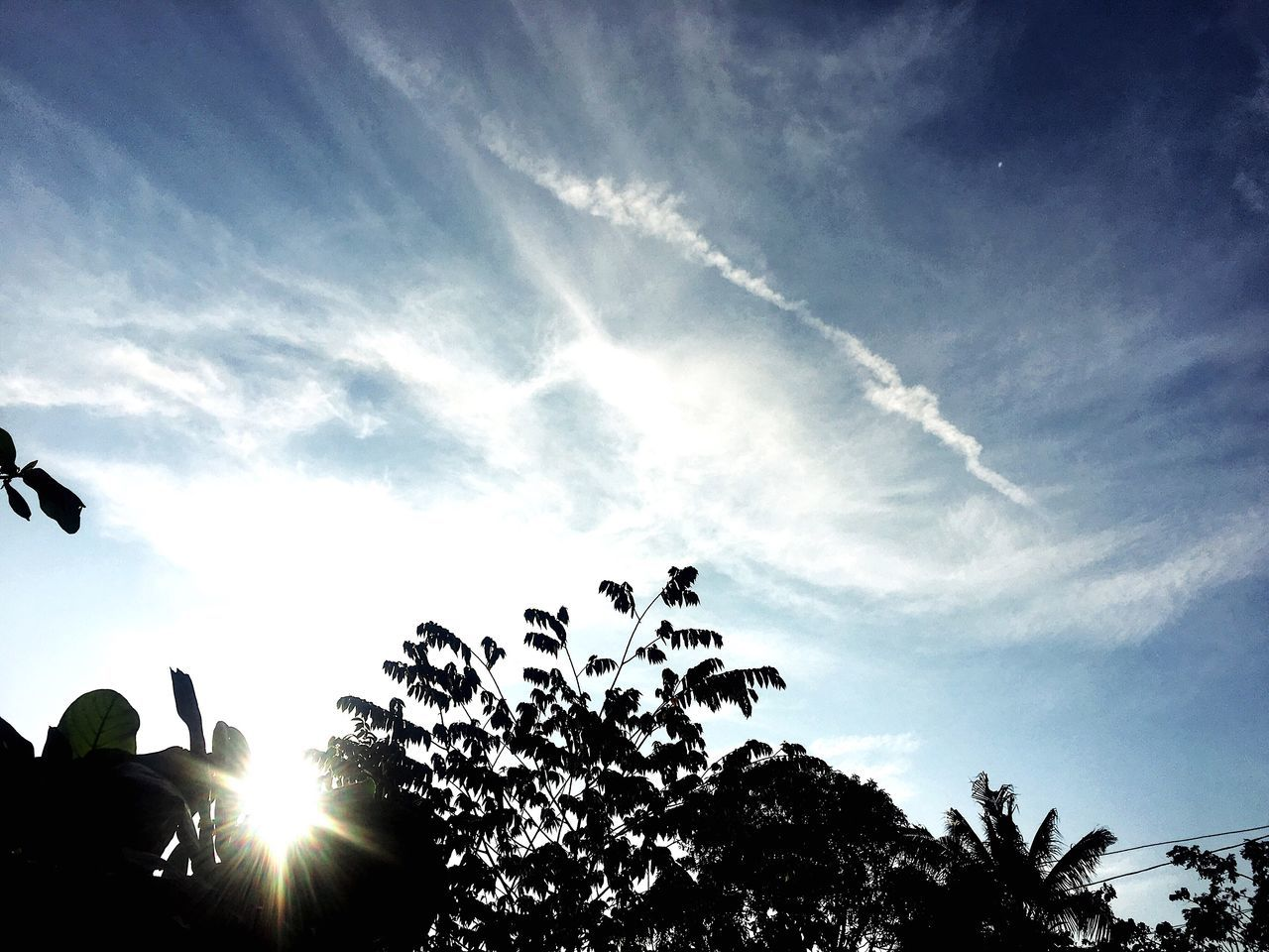 Sky Sunbeam Silhouette Sun Nature Sunlight Low Angle View Beauty In Nature Tree No People Outdoors Scenics Day Eyeem Philippines