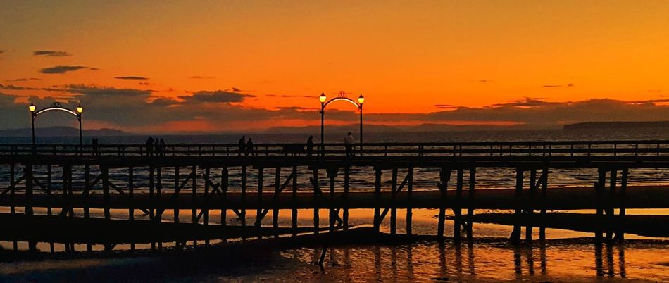 Sunset Sea Nature Outdoors Travel Destinations Scenics Tranquility Dramatic Sky Beauty In Nature Bridge - Man Made Structure Bird Water Night Sky No People Cityscape Beach Pink Color Illuminated Dramatic Sky Real People Silhouette Orange Color Nature Tranquil Scene