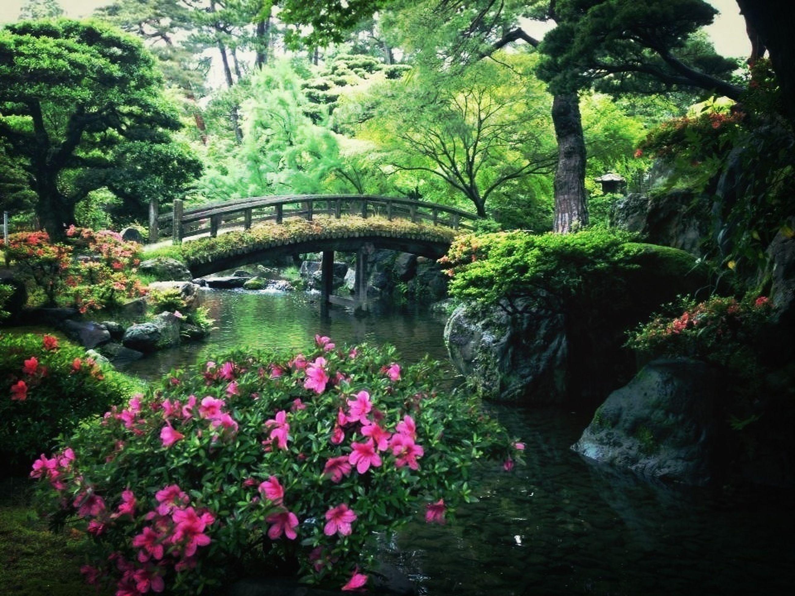 Japannese Garden