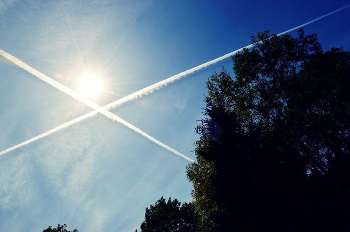 Plane Skytree Clear Sky Beautiful Day Good Times Dreamy♡