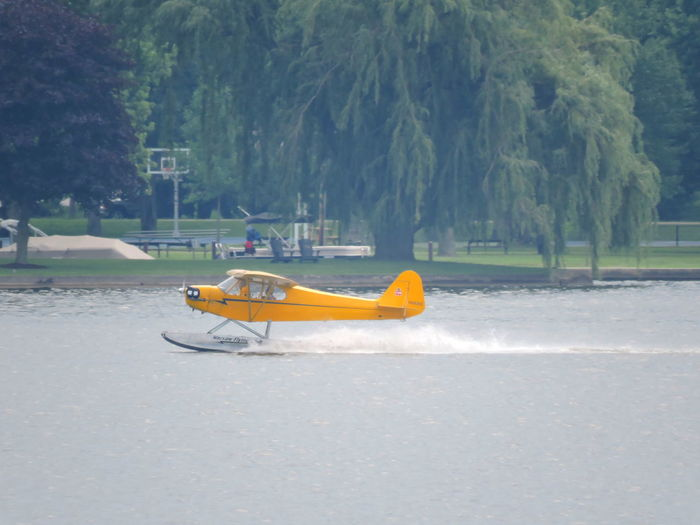 Sea plane Absence Beauty In Nature Childhood Day Nature No People Outdoors Sea Plane Tree Water Yellow