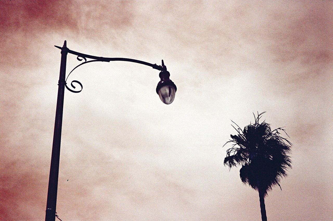 Low Angle View Outdoors Koduckgirl Film Photography Film Street Lamp