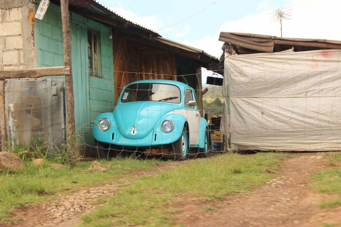 Enjoying Life Hello World Vscomex Vscogood Vscocam Vscolife Vscogreen Vscocar Photography Photography Gallery Photographyislife Perfect Puebla, México. Gallery Of Art Clasic Cars Volsvagen Vintage Cars