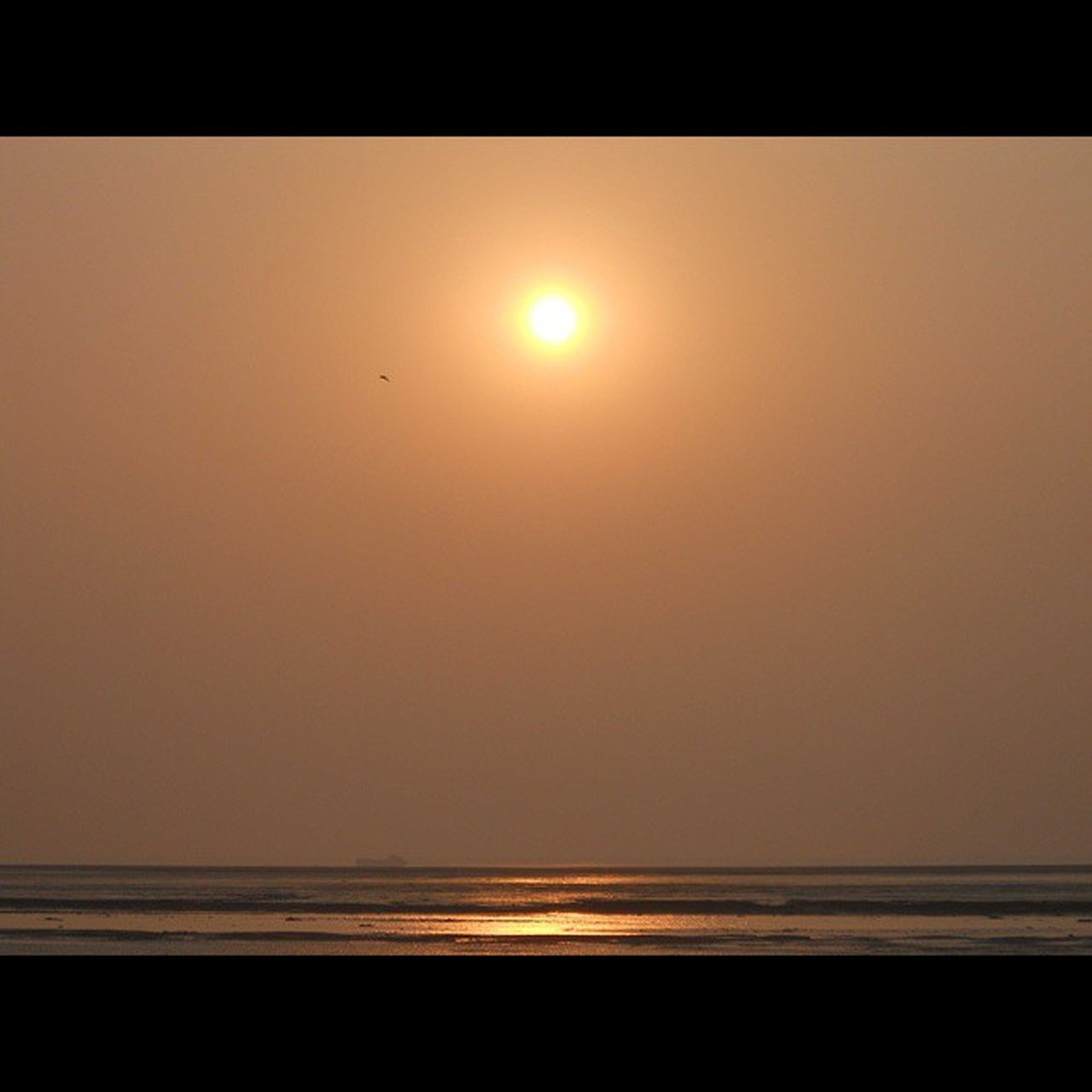 In the sky the bird is flying free, and the ship is sailing in the odds of the sea. Though lifeless and noiseless now, but you can never trust a sea anyhow. TryingToCreateAPoem 😅 Sunset Throwback Surat Dumasbeach Ilovetoclick Calm Placid  Atmosphere