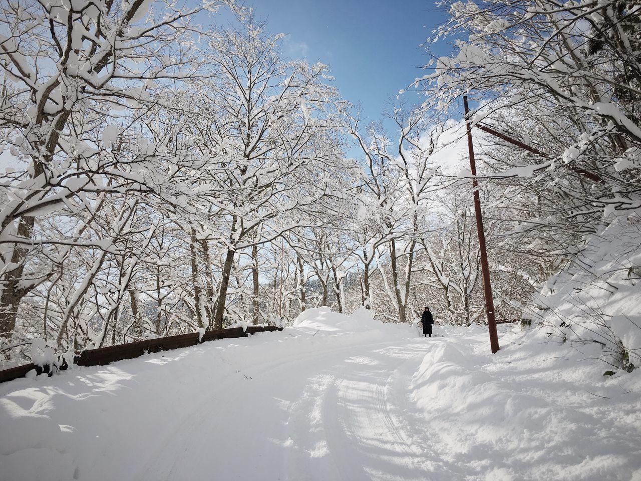 IPhone Snow Winter Nature