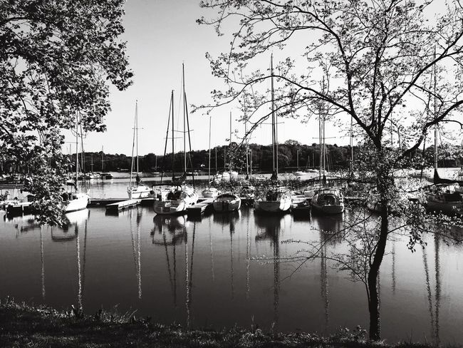 Hanging Out Boats Water Reflections Nature Lake Eye4photography  EyeEm Best Shots Open Edit Blackandwhite Trees Sailboat