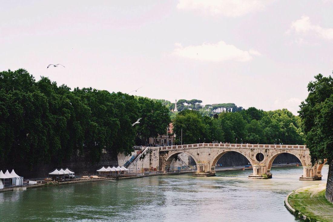 Tiber's Bridge - Vscocam Tiber River Cityscapes