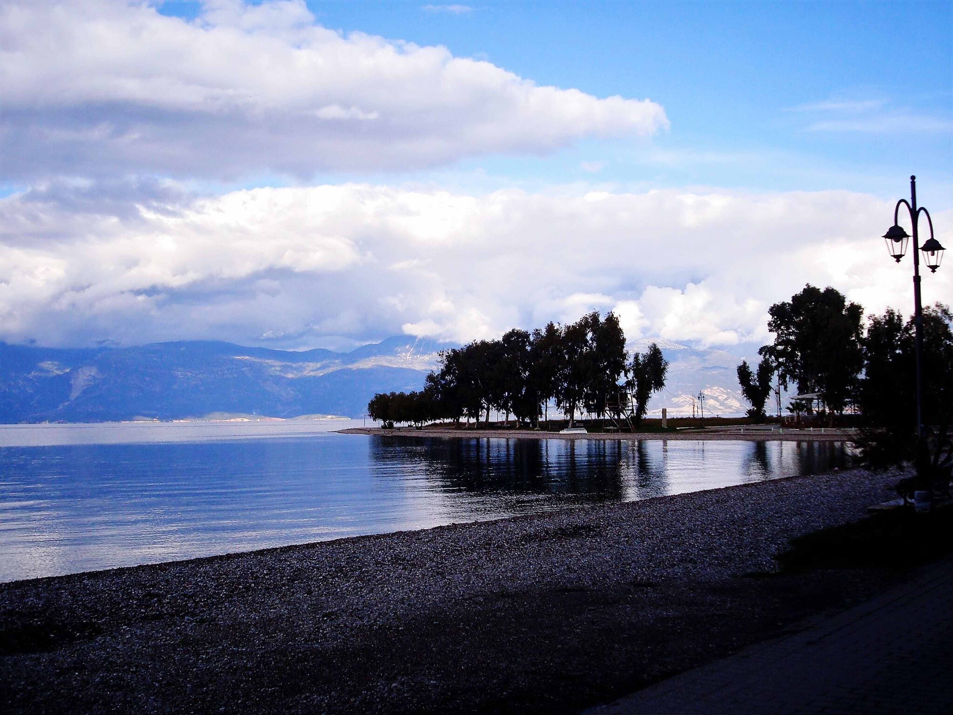 sky, tree, water, sea, nature, cloud - sky, beauty in nature, outdoors, beach, growth, scenics, no people, day
