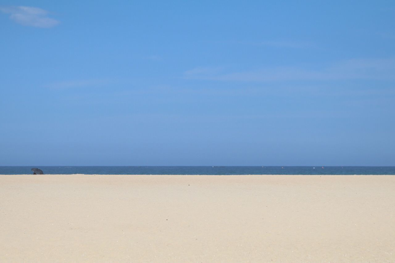 Between the Sky and Beach Sea Beach Horizon Over Water Blue Scenics Nature Sand Water Tranquility Beauty In Nature Sky Outdoors Day South Korea Sokcho Beach No People Umbrella Beach Swim Cloud