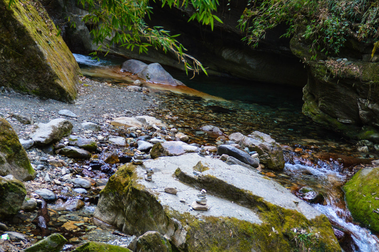 Nature High Angle View Outdoors Beauty In Nature Water No People Day Tree Landscape Spring Water Outdoor Trekking In Nepal Travel Photography Life In The Mountains Pokhara, Nepal Hidden Spring Springtime Bamboo Leaf Peaceful Zen Tranquility Peace Of Mind Meditation Place Lifestyles Leisure Activity