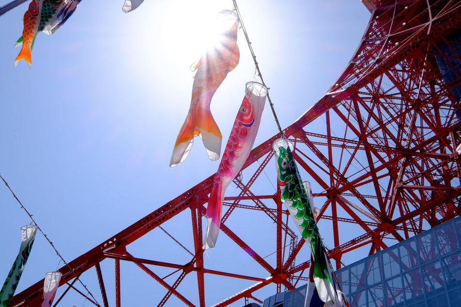 東京タワーと鯉のぼり Tokyo Tower Carp Carp Streamer Fujifilm Fujifilm X-E2 Fujifilm_xseries Japan Japan Photography Japanese Culture Multi Colored Outdoors Tokyo Tokyo Tower Xf10-24mm 子供の日 日本 東京 東京タワー 東京塔 鯉 鯉のぼり