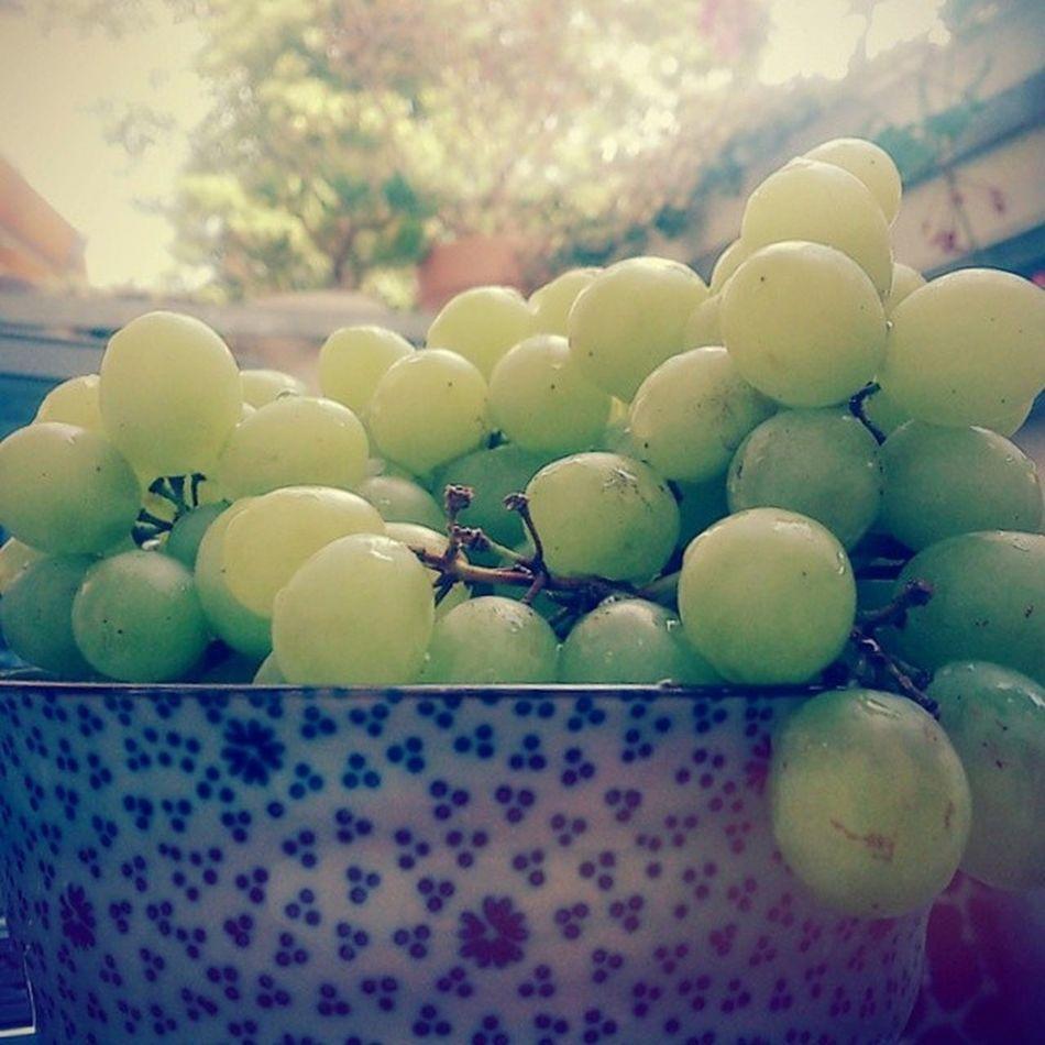 Amazingness Fruitfueled Fruitislife Vegan hclf neverenoughfruit ferien
