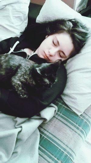 Kitty Mycat Kittycat