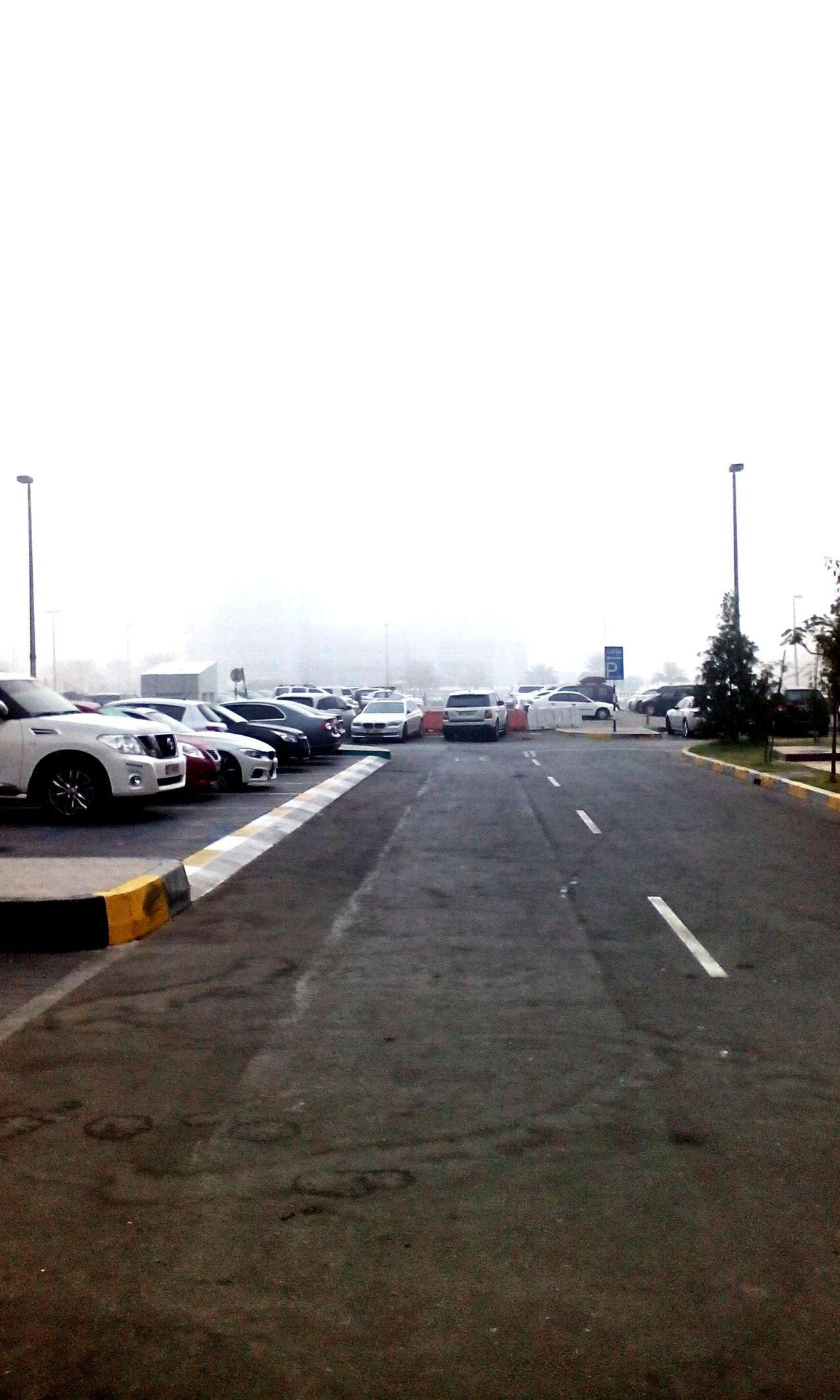 Fog Abudhabi Winter Cold Morning