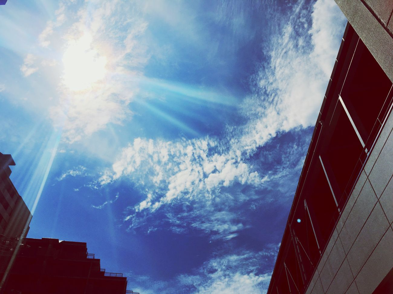 Japan Kobe Cloud Cloud - Sky Sun Sunshine Beautiful Blue Clouds And Sky Blue Sky Clear Sky Clearautumnsky Autumn IPhone Today Todayssky Sunny Sunnyday Feelsogood Happy Happyday Beauty In Nature Natural Beauty September 2016