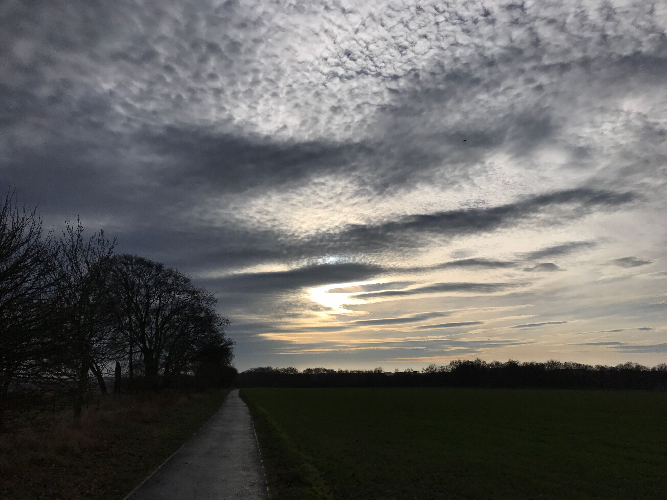 road, tree, cloud - sky, no people, transportation, the way forward, nature, sunset, sky, outdoors, landscape, scenics, beauty in nature, day