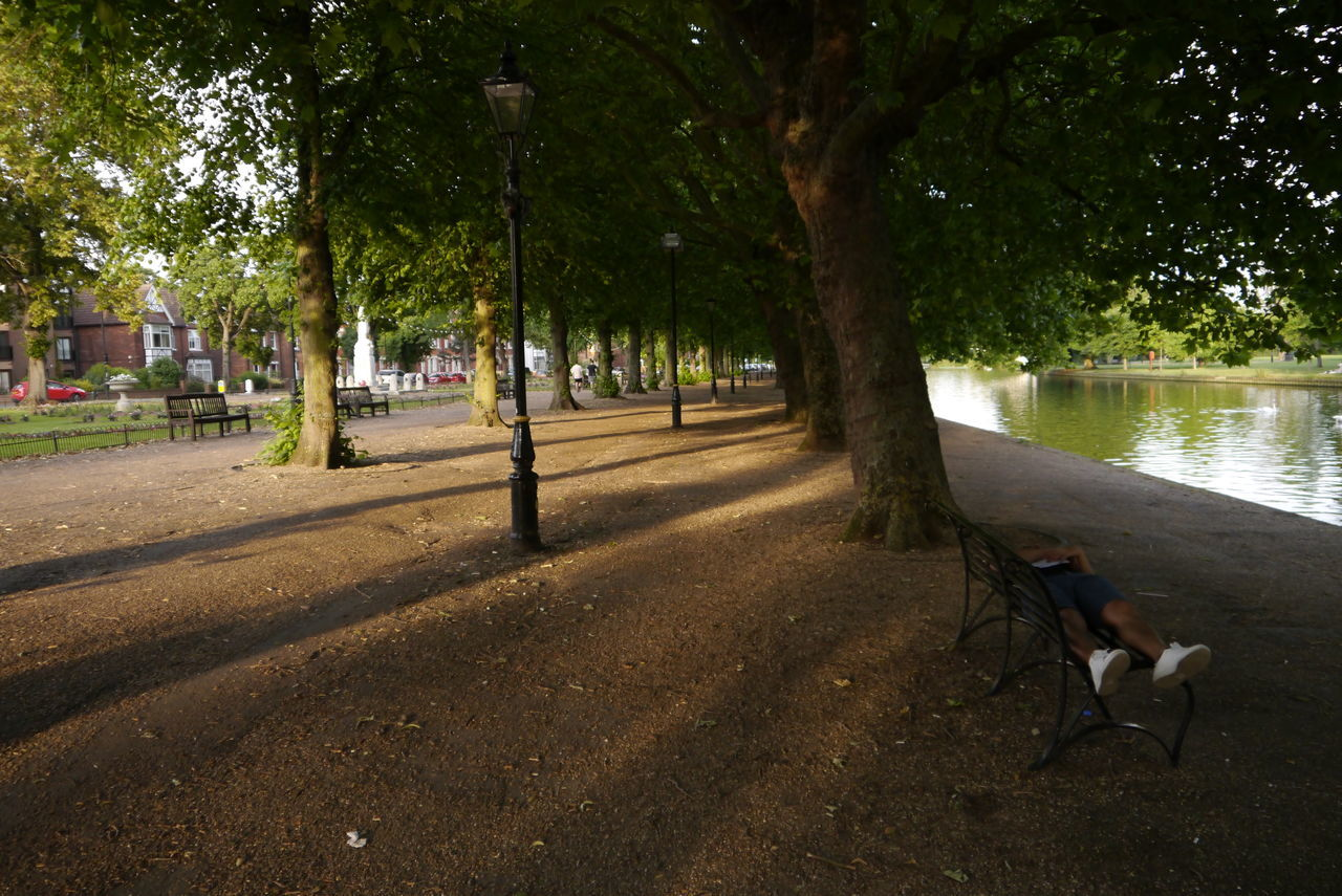 BEDFORD, ENGLAND, UK - June 21, 2017: People try to stay cool on the riverbank of the Great River Ouse in Bedford, England, UK on June 21, 2017. Bedford Bedfordshire Day England Great River Ouse Nature Outdoors Riverbank Riverside The Embankment Tree Uk
