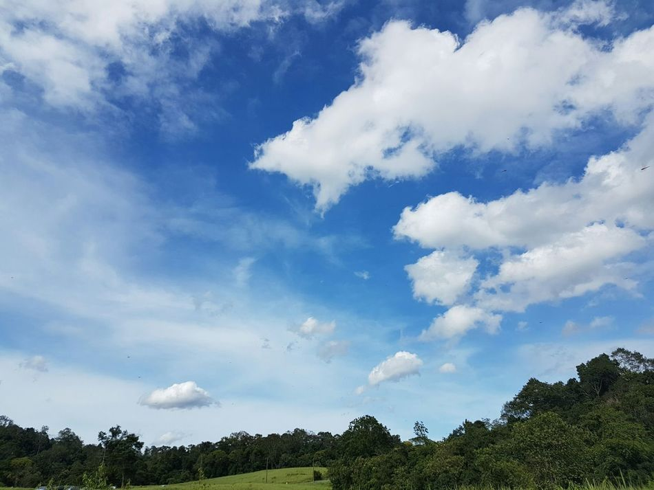 let me fly through the nice sky. I wanna go to the Never Land with Peterpan. Nicesky Peterpan Nature LetmeFly LoveNature Lovesky National Park Kaoyai Thailand Bluesky & Cloudes Green Color Green Landscape