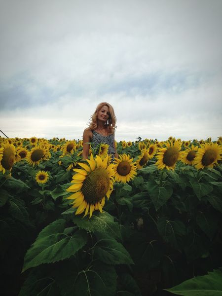 Flower Nature One Person Only Women Young Women Cloud - Sky One Woman Only Beauty Beauty In Nature Beautiful Woman EyeEm Selects Women Of EyeEm Beautiful Women ♥ Sunflower EyeEm Best Shots - Nature Blond Hair Looking At Camera Leaf Summer