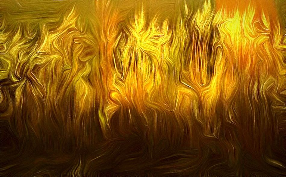 Fire Grass Wispy Loveliness Whipped Wispy Warmth  The Week Of Eyeem Picture Perfect Make It Yourself Divine Art In My Mind's Eye My Artwork Creativity Photography Creative Getty Images Dreamlike Pivotal Ideas Colour Of Life Color Palette Nature Photography Natural Light Portrait Flames & Fire Making My World Photographic Art Life Is Beautiful Art Gallery Getting Inspired