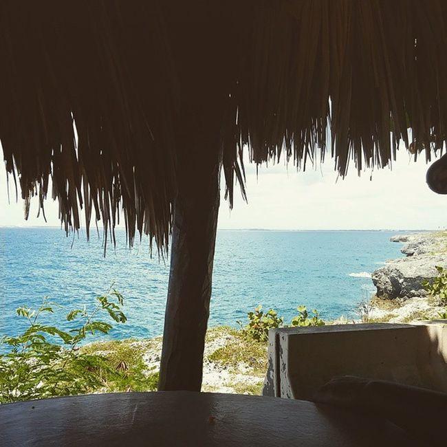 Feliz Dia de la Independencia Republica Dominicana 🌴 Latepost DiadelaIndependencia DRLife Beachlife Beachinthewinter Santodomingo