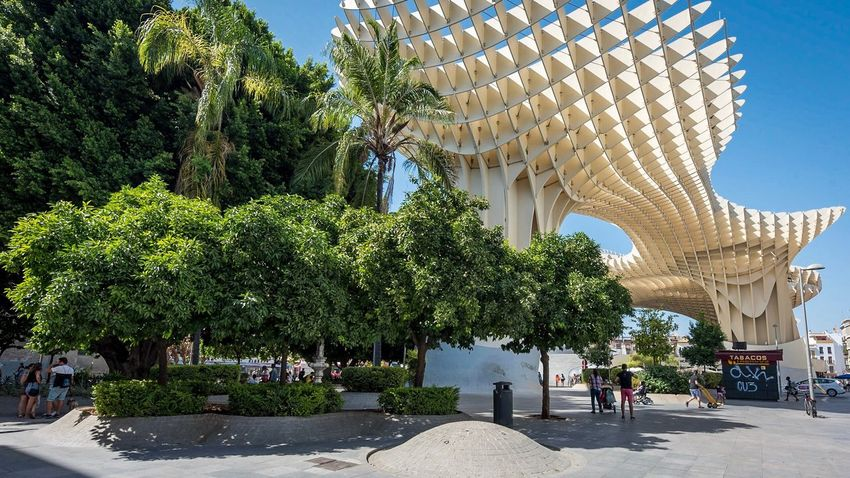 Tree Architecture Built Structure Day Travel Destinations Outdoors Building Exterior Sunlight Large Group Of People Real People Women Sky People Adult Adults Only