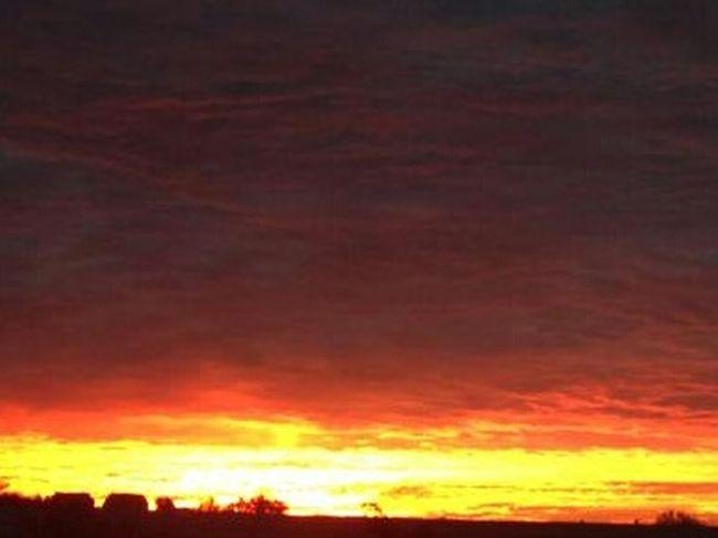 Good Morning EyeEm!!! Happy Hump day (Wednesday)!!! Sunrise Silhouette Silohette Taking Photos Darkness And Light