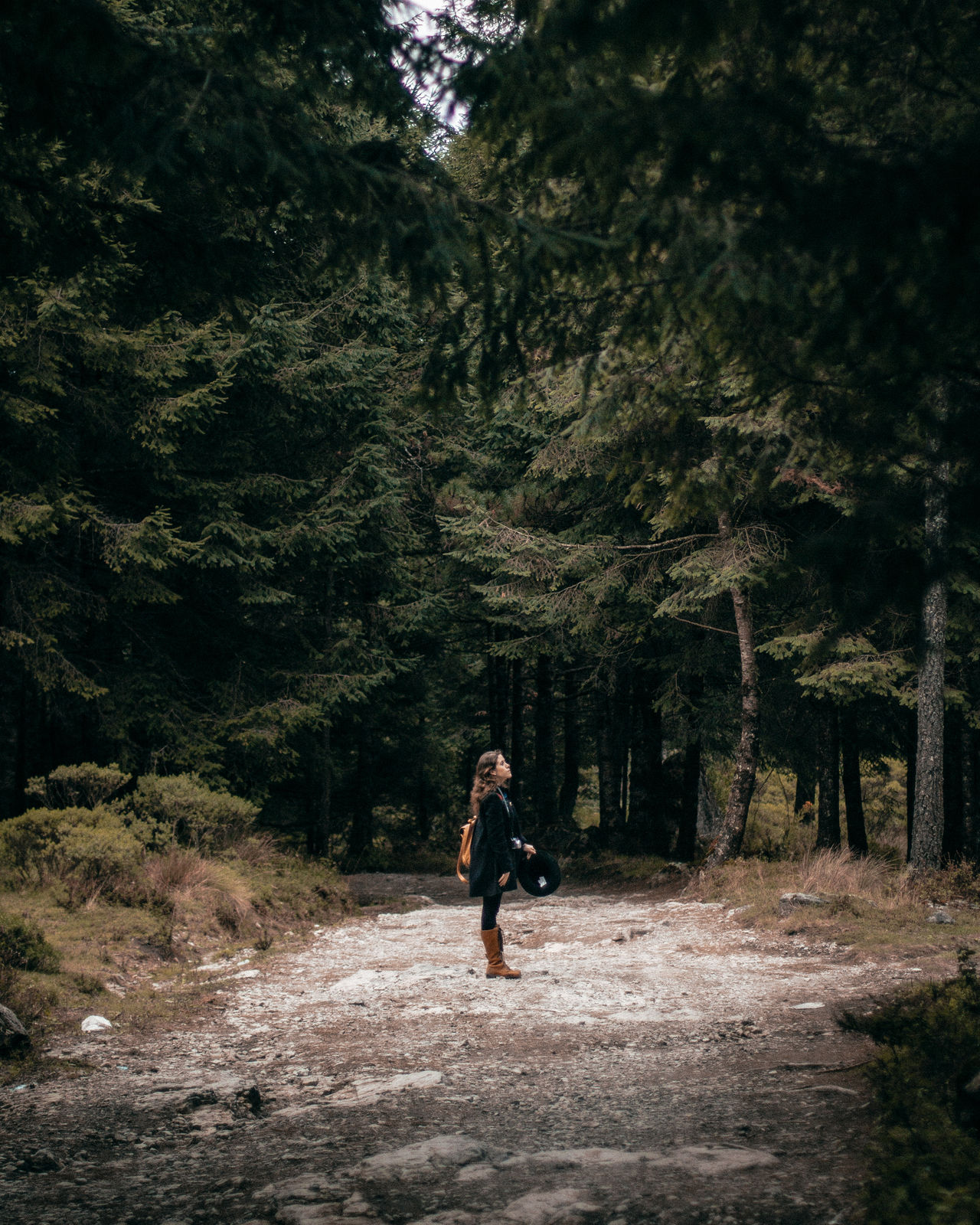 Day Daydream Daydreaming Daylight Forest Girl One Person Outdoors Walking
