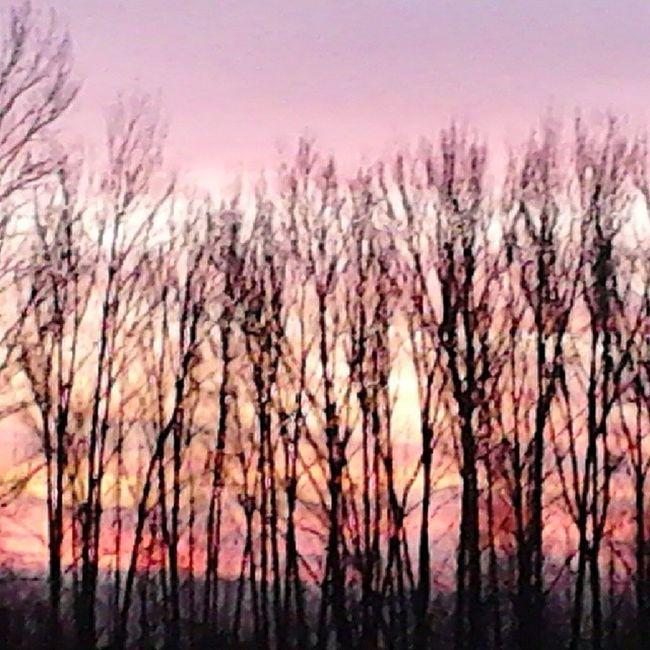 Bestnature Bestsunrise Bestphotogram Sunrise sky