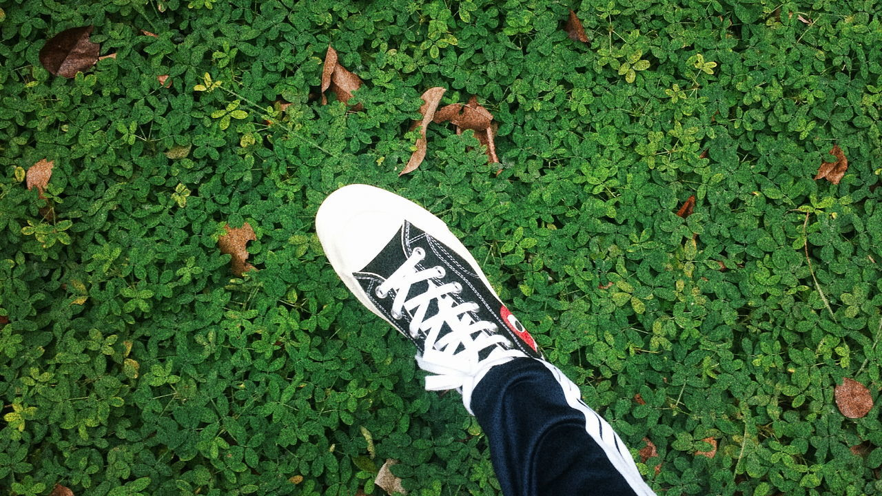 Grass Personal Perspective Shoe Real People High Angle View Human Body Part One Person Leisure Activity Green Color Men Lifestyles Outdoors Day Low Section Nature Close-up Human Hand People Adult Shoes Converse Conversecdg