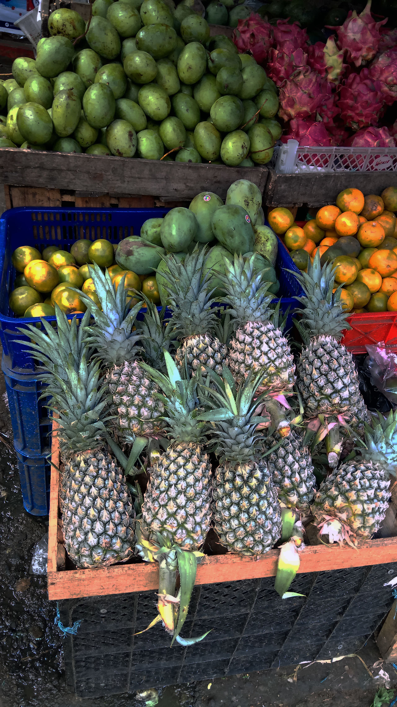 Fruits in traditional markets Abundance Artichoke Choice Day Food Food And Drink For Sale Freshness Fruit Healthy Eating Large Group Of Objects Market No People Outdoors Pineapple Retail  Streetphotography Variation Vegetable