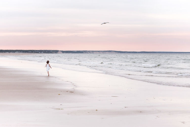 Beach Beauty In Nature Bird Coastline Escapism Flying Full Length Horizon Over Water Idyllic Non-urban Scene One Animal Relaxation Sand Scenics Sea Seascape Shore Solitude Sunset Tranquil Scene Tranquility Vacations Walking Water Wave