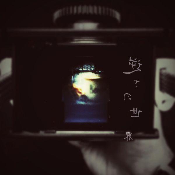 逆さの世界 二眼レフ Finder Camera