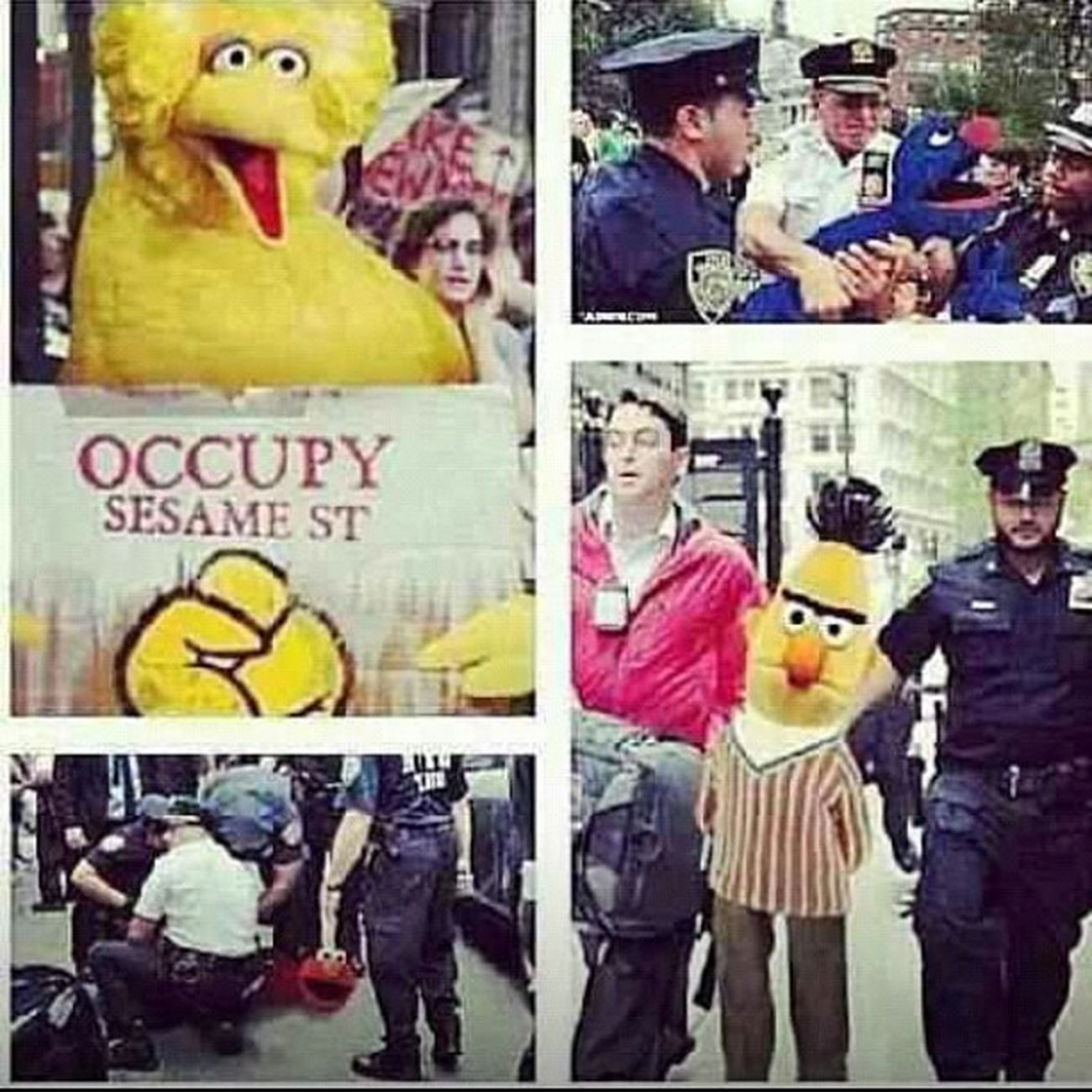 Damn ? just got real lol TeamObama Freebigbird Freeelmo Freebert freegrover repost