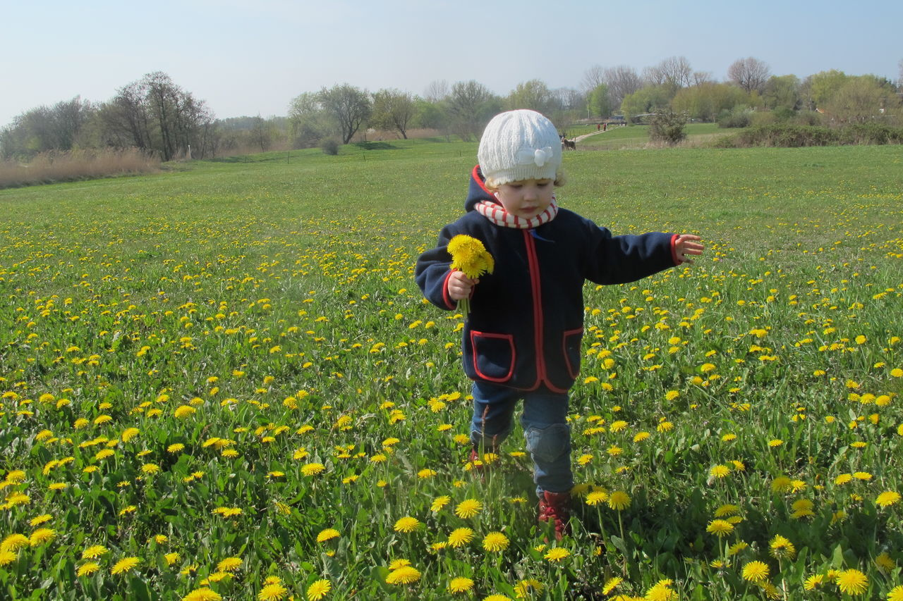 Boys Child Childhood Children Only Collecting Flowers Day Full Length Gather Flowers Growth Males  Nature One Person Outdoors People Spring